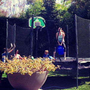 alleyoop-trampoline-accessories-on-outdoor-trampoline-with-hoppy-ball